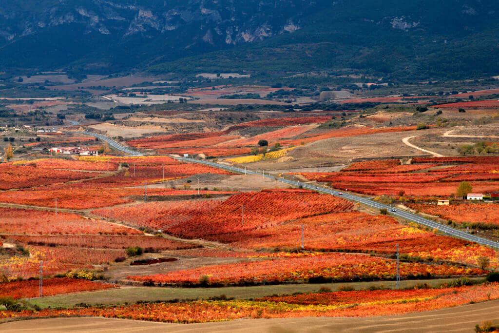 Rioja Otoño